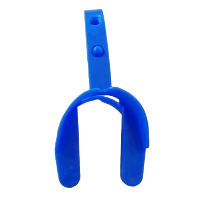 Plastic toy PVC whale fish